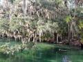 riveroaks2